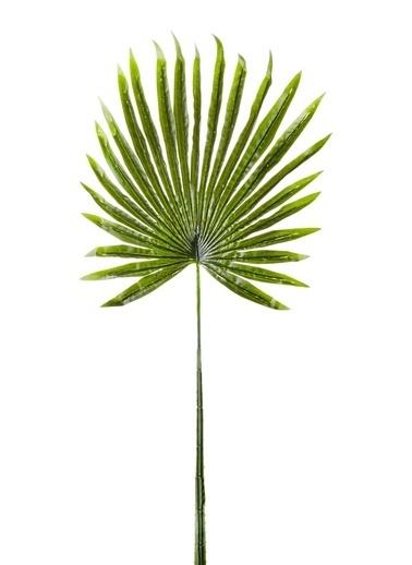 The Mia Palmetto Yaprak 85 x 35 Cm Yeşil